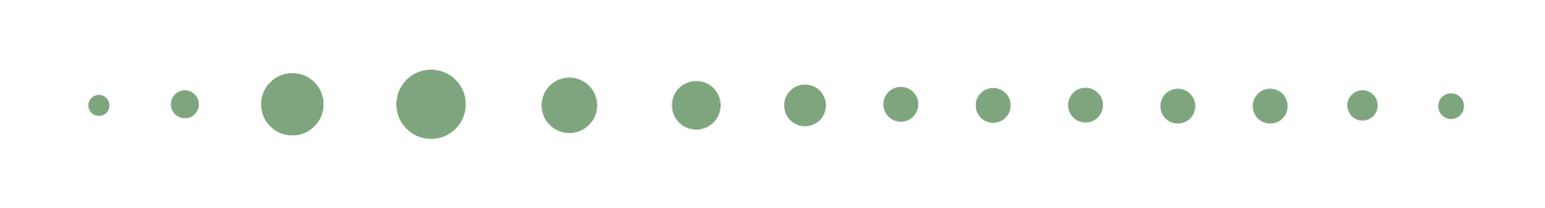 OSTEOPATA-PARMEGGIANI-separator-25